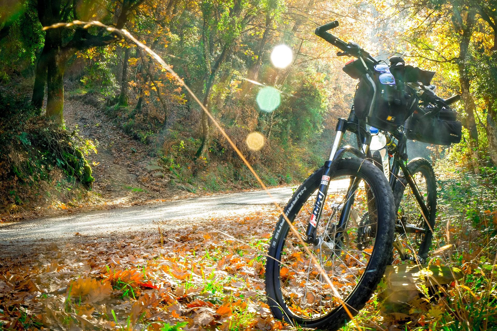 ciclismo para todos los niveles
