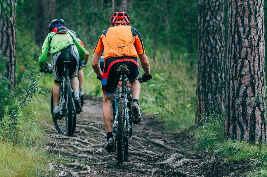 finde mountainbike.jpg