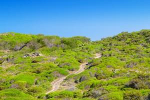 Menorca. Reserva de la Biosfera