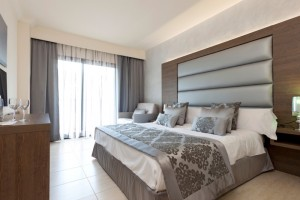 RDJ_2014 Premium Double Room H-2762