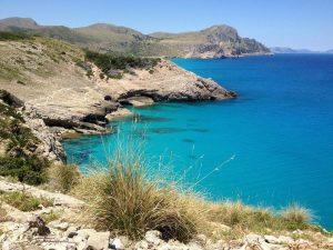 Los colores de Mallorca que podrás captar en tus excursiones por la isla