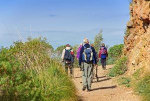 Los clientes del Vanity Golf disfrutan de las rutas por Mallorca junto a un experto en senderismo